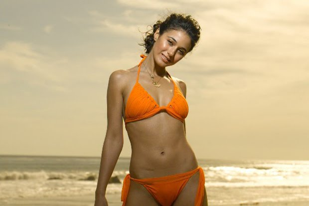 emmanuelle chriqui pics 3