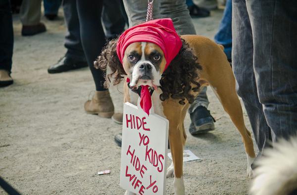 antoine dogson