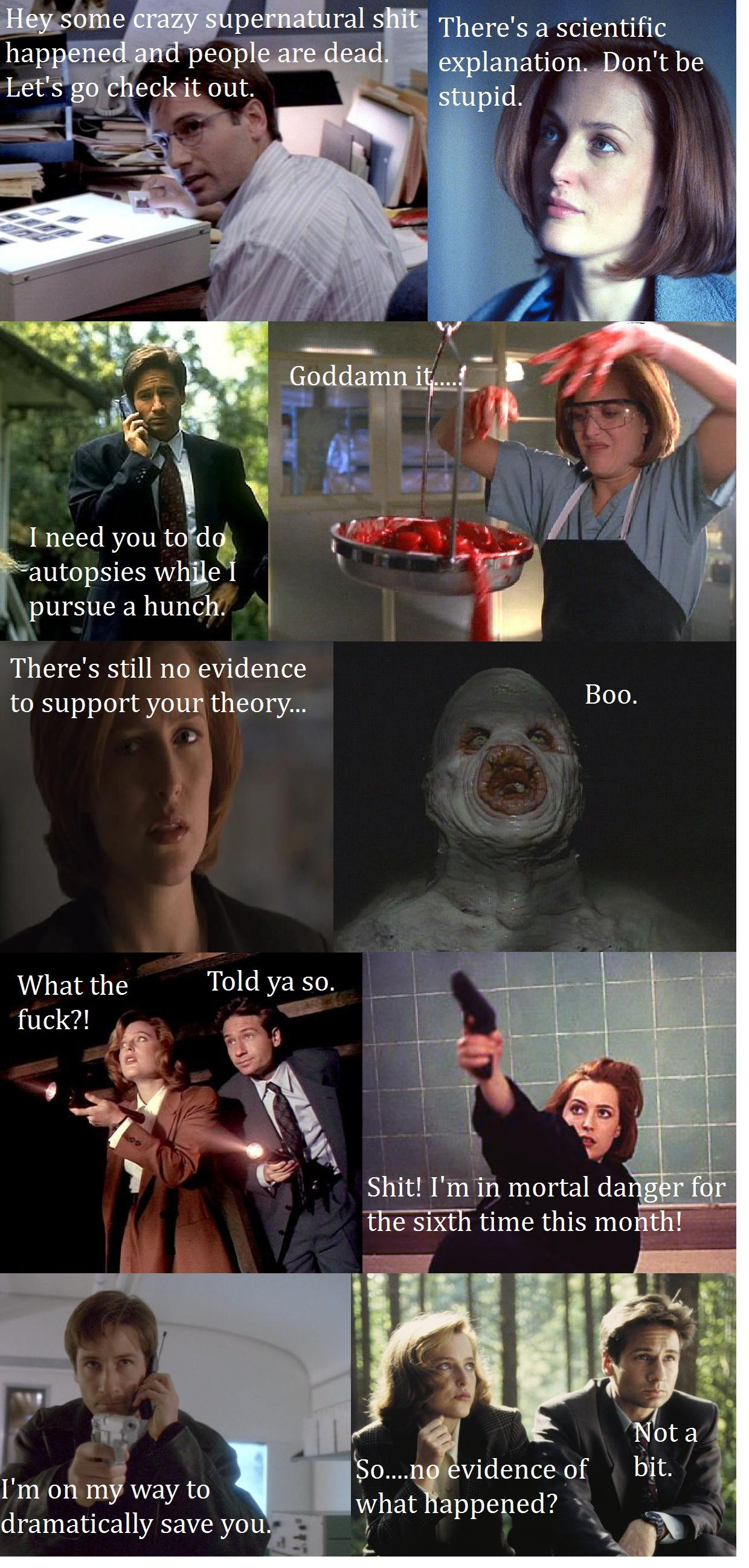 Quotes X Files Brilliant A Very Rough Summary Of The Formula For My Favorite Xfiles