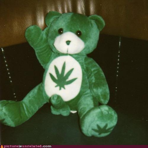 wtf photos videos - I Dont Remember This Care Bear