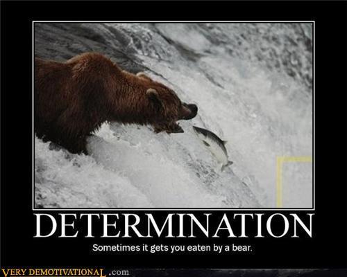 funny determination quotes quotesgram
