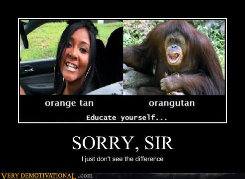 demotivational posters - SORRY, SIR