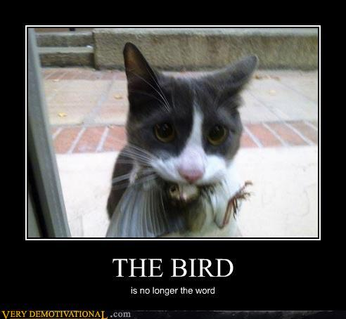 demotivational posters - THE BIRD