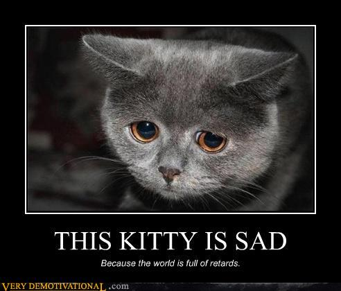 demotivational posters - THIS KITTY IS SAD