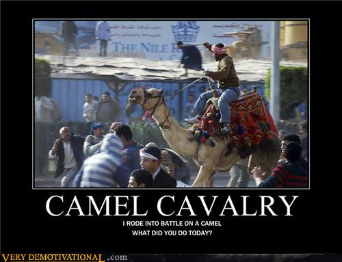 demotivational posters - CAMEL CAVALRY