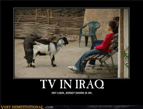 demotivational posters - TV IN IRAQ
