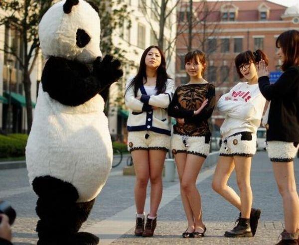 very sexy panda shorts