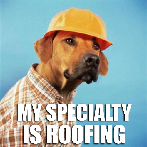 roofing funny pictures quotes pics photos images videos of