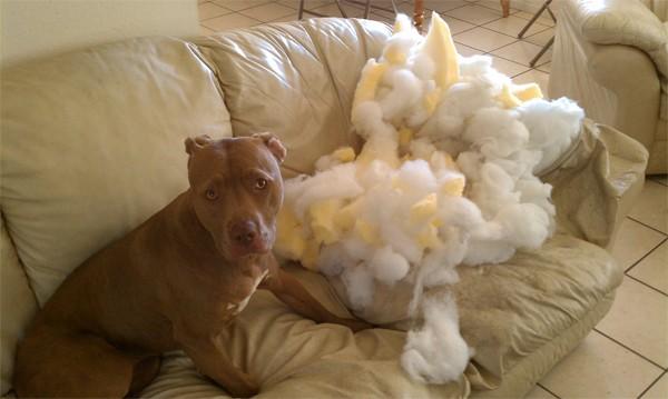 Errmm.. It wasn't me..