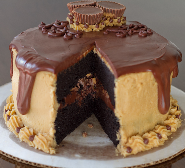 Chocolate peanutbutter cake, that is all…. | Funny Pictures, Quotes ...