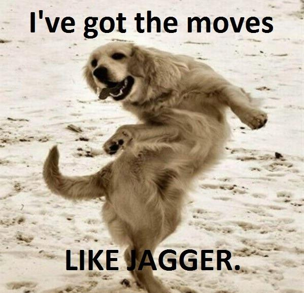 Funny Happy Dance Meme : Moves like what funny pictures quotes pics photos