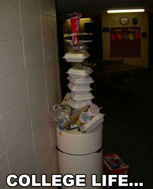 College Life Funny Pictures Quotes Pics Photos Images Videos Interesting Quotes About College Life