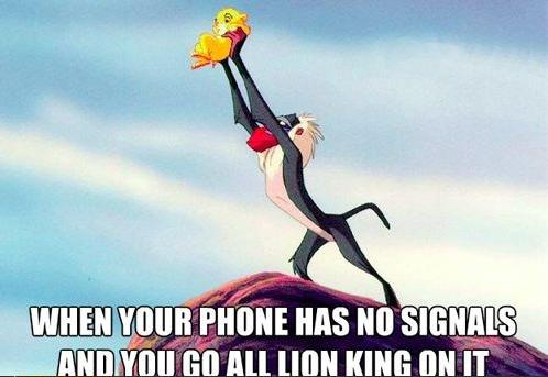 Going all Lion King on that shit | Funny Pictures, Quotes, Pics ...