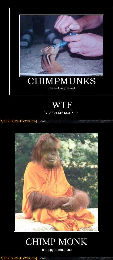 demotivational posters - Chimpmunk