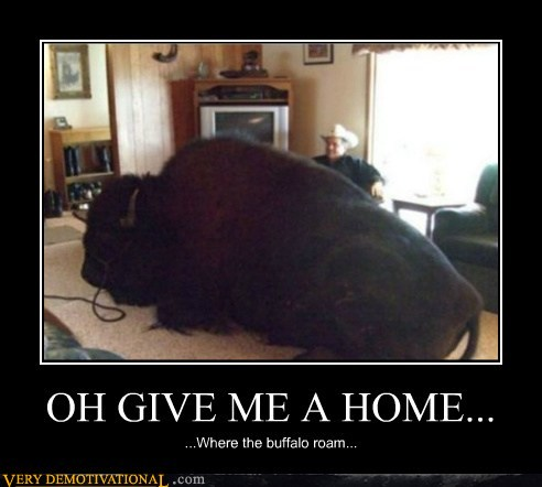 demotivational posters - OH GIVE ME A HOME...