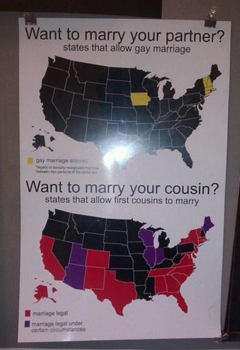 Same Sex Marriage Vs First Cousin Marriage Funny Pictures