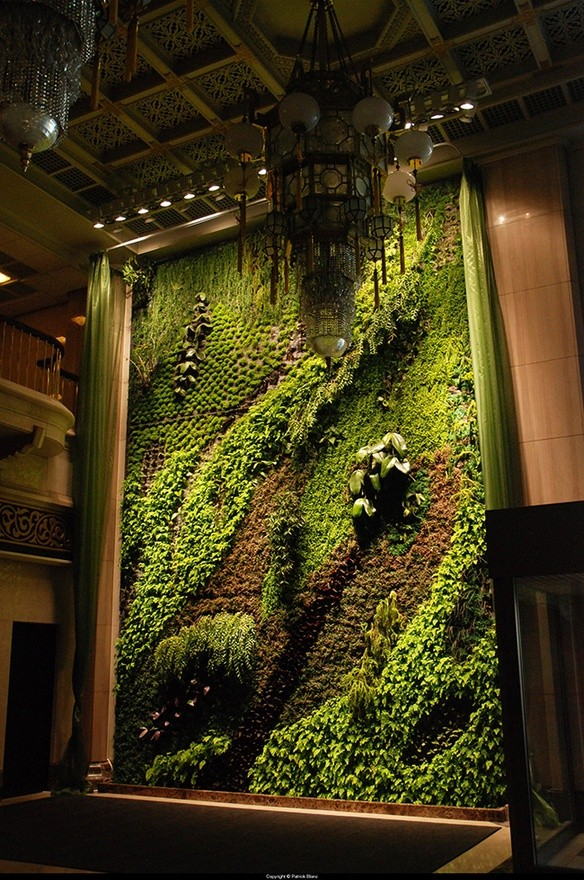 vertical garden funny pictures quotes pics photos. Black Bedroom Furniture Sets. Home Design Ideas