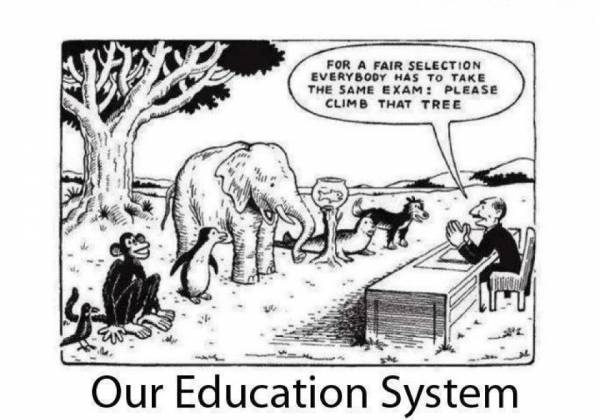 education system funny wallpapers: Funny Pictures, Quotes, Pics