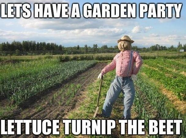Lets Have A Garden Party Funny Pictures Quotes Pics
