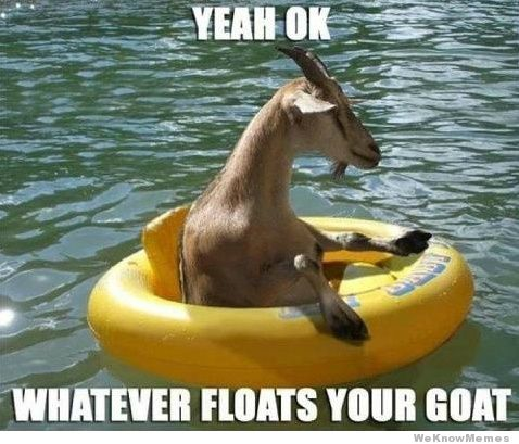 funny goat quotes