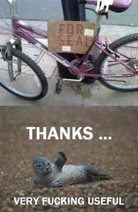 Bike For Seal