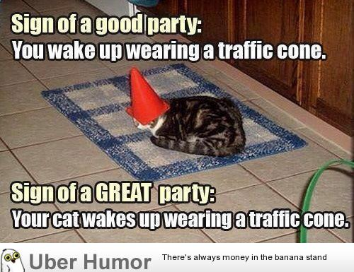 Image result for party animal funny