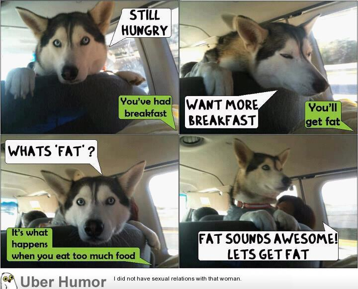Still hungry | Funny Pictures, Quotes, Pics, Photos, Images ...