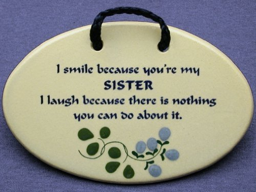 Sister Funny Quotes Beauteous 75 Funny Sister Quotes Latest Edition  Funny Pictures Quotes