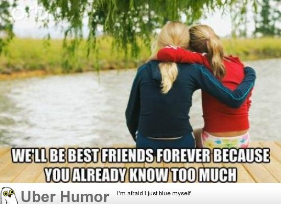 Funny Memes For Bffs : Daily afternoon chaos pictures funny