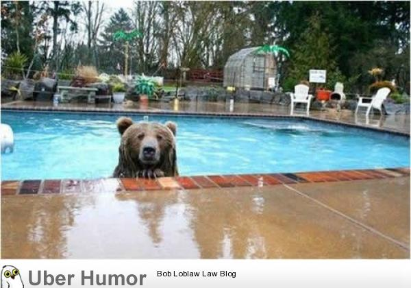 You Build Houses In My Woods I Swim In Your Pool Funny Pictures Quotes Pics Photos Images