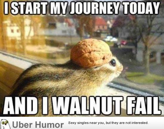 Funny Memes For Kids Animals : Daily afternoon chaos 40 pictures funny pictures quotes pics