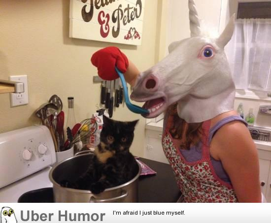 Daily Afternoon Chaos (40 Pictures)