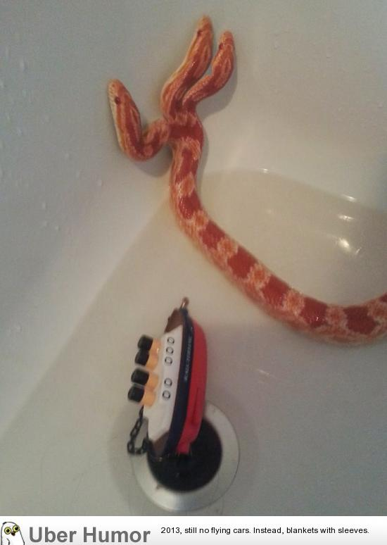 hydra my three headed corn snake funny pictures quotes pics