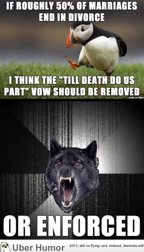 Do the words mean anything funny pictures quotes pics - Funny animal pictures with words ...