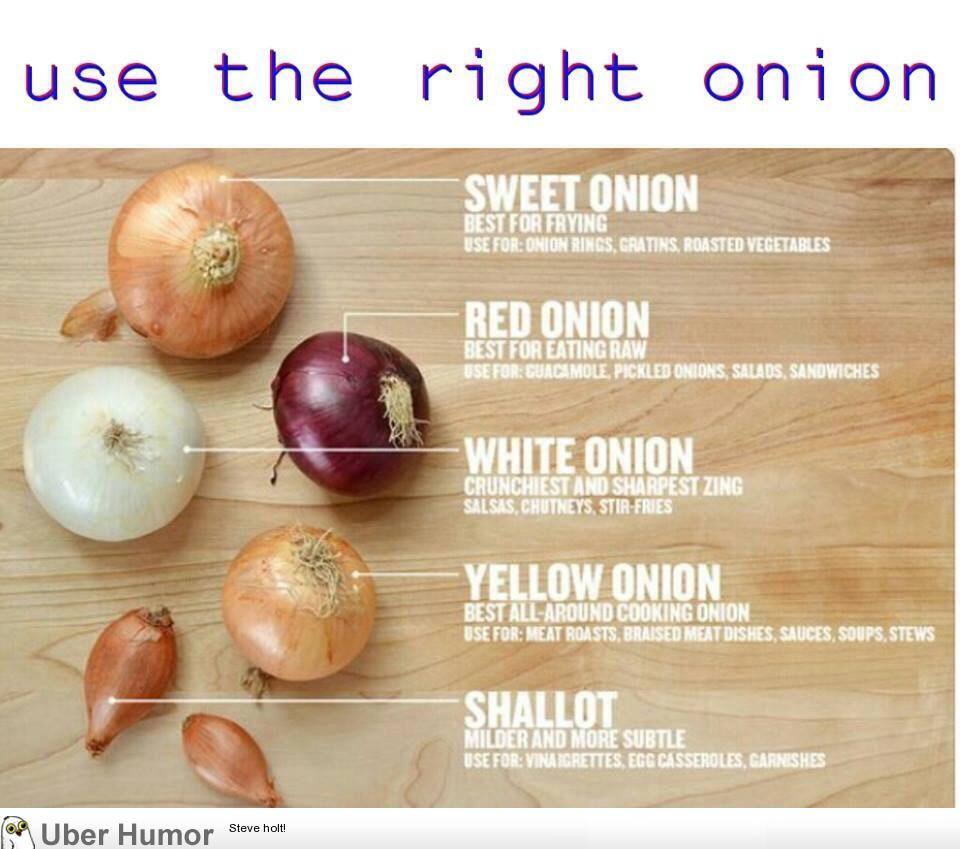 Use The Right Type Of Onion For The Right Food Funny