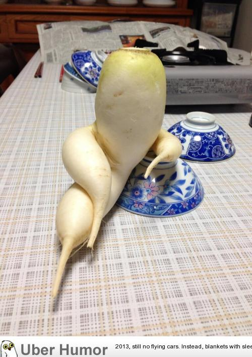 An exceptionally suave and sophisticated daikon radish
