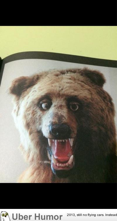Friend got a book called 'Crap Taxidermy' this is my favorite.