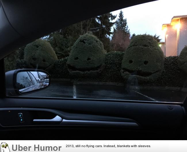 These creepy bushes outside my dentist's office