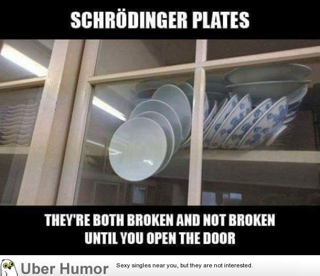 Schrodinger S Plates Funny Pictures Quotes Pics