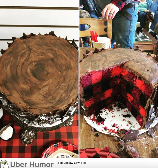 Lumberjack Plaid Log Cake [Homemade] | Funny Pictures ...