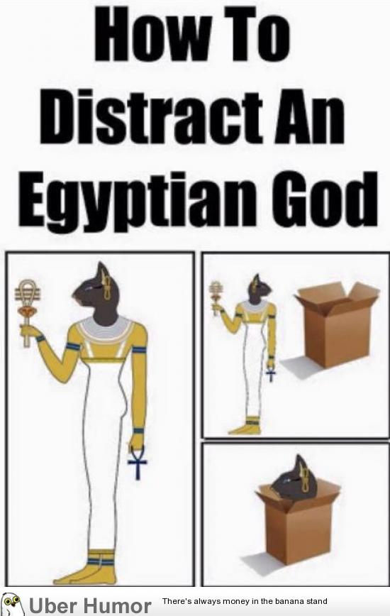 Funny Pictures About Egypt: How To Distract An Egyptian Goddess