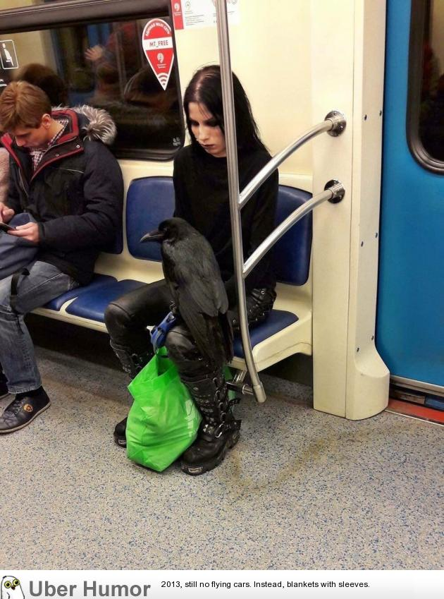 Just a girl and her raven on the subway…