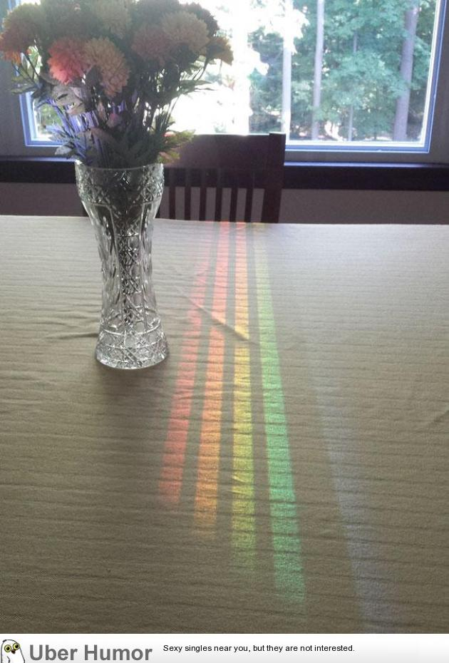 This Spectrum Reflected Off The Dining Room Window Through A