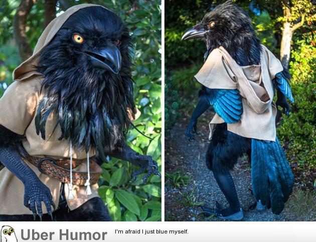 This Unbelievable Crow Costume Funny Pictures Quotes Pics