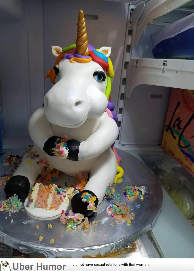 A Sculpted Unicorn Cake My Wife Made Funny Pictures