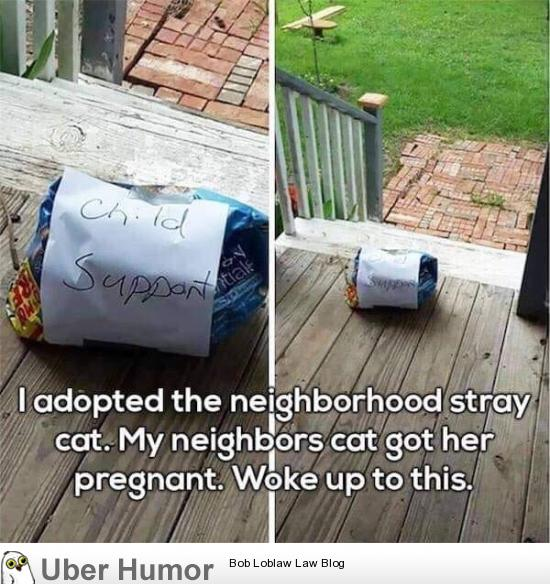 Good neighbor | Funny Pictures, Quotes, Pics, Photos, Images ...