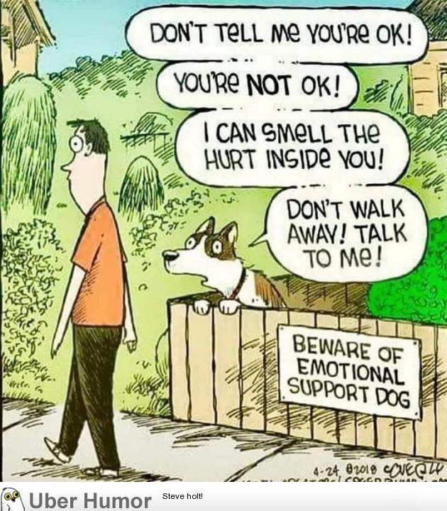 Beware Of The Emotionally Support Dog Funny Pictures Quotes Pics
