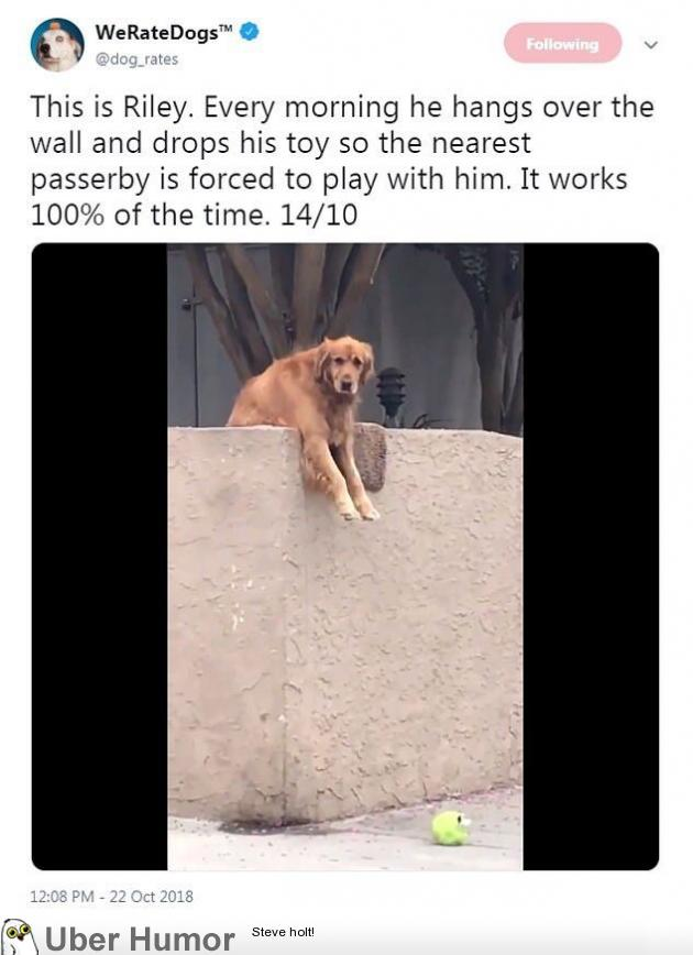 I'd play with Riley