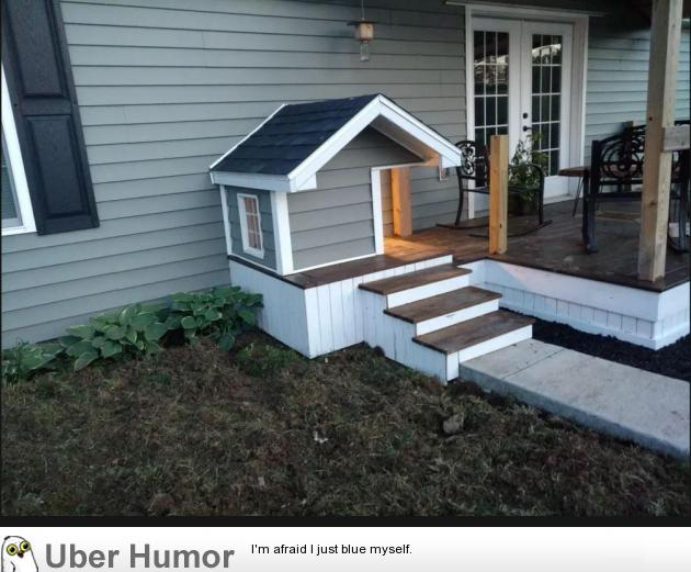 This doggy house entrance one of my clients built | uberHumor.com