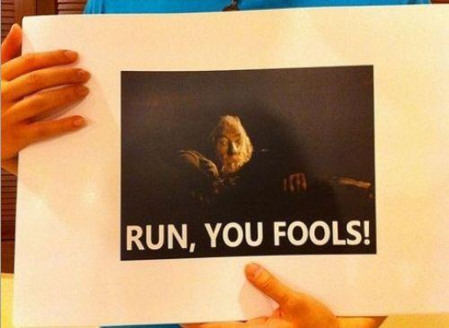 funny photos